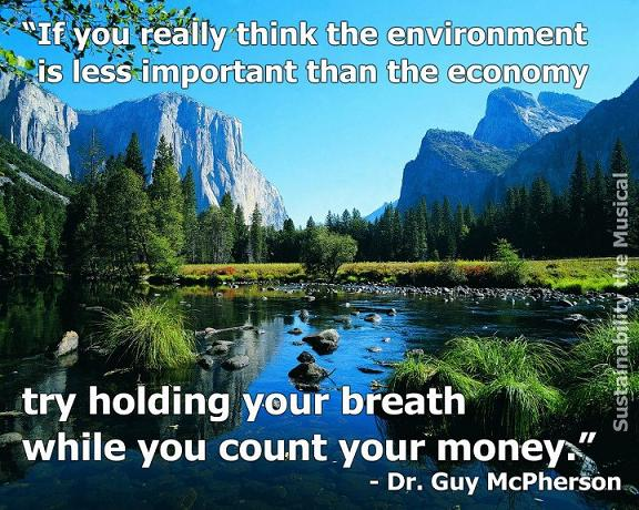 environment-and-money