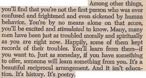 catcher in the rye essays on depression