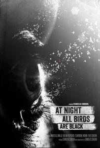 birdsnight