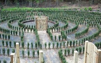 John B. McLemore's maze